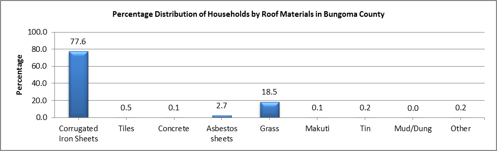 Bungoma - Roof Materials