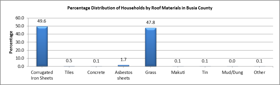 Busia - Roof Materials