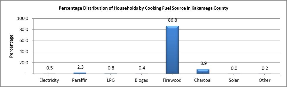 Kakamega - Cooking Fuel