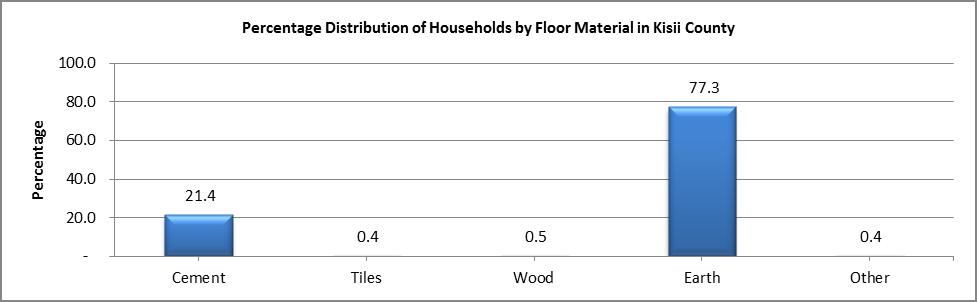 Kisii - Floor Material