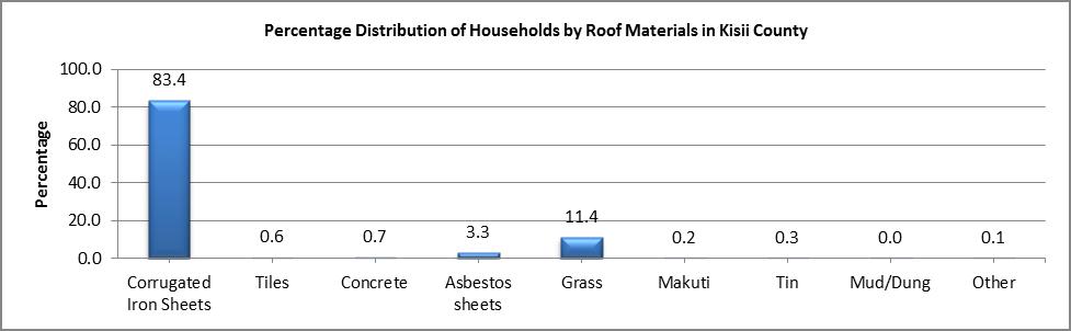 Kisii - Roof Materials