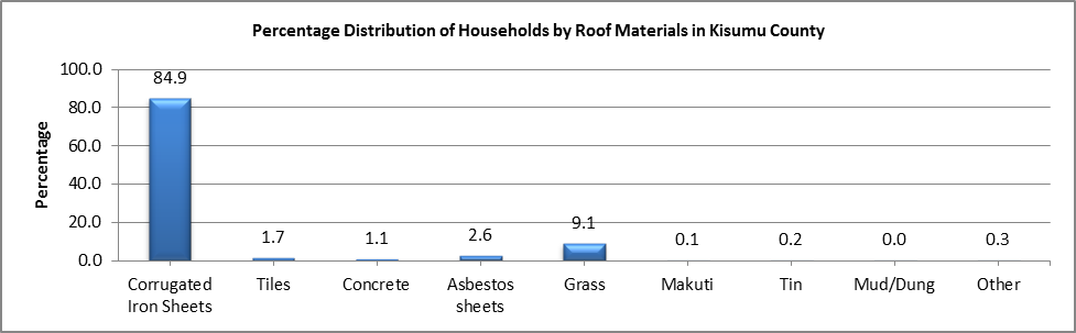 Kisumu - Roof Materials