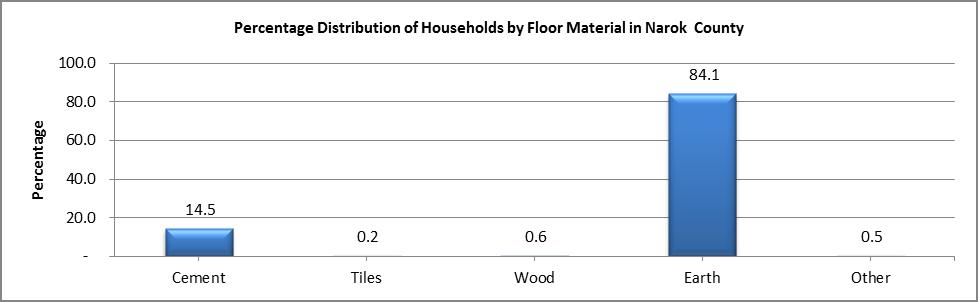 Narok - Floor Material