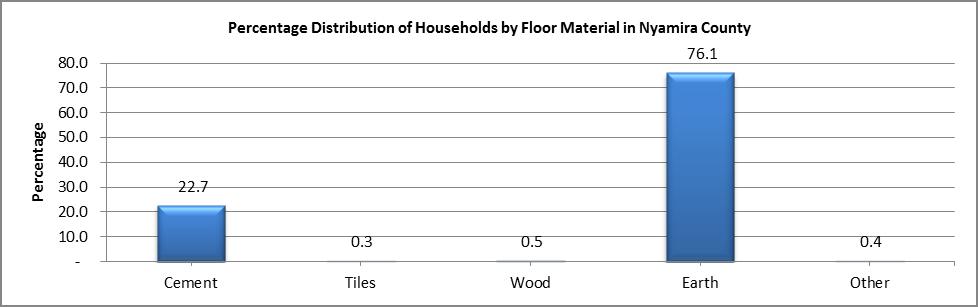 Nyamira - Floor Material
