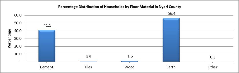 Nyeri - Floor Material
