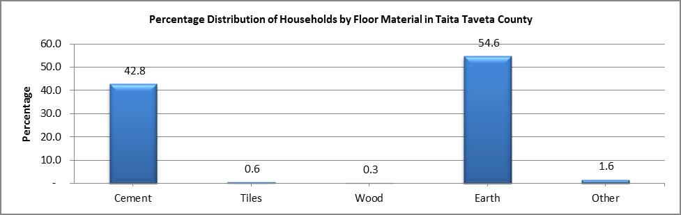 Taita Taveta - Floor Material