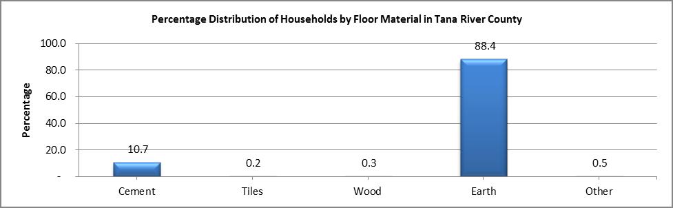 Tana River - Floor Material