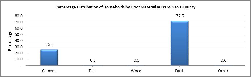 Trans Nzoia - Floor Material
